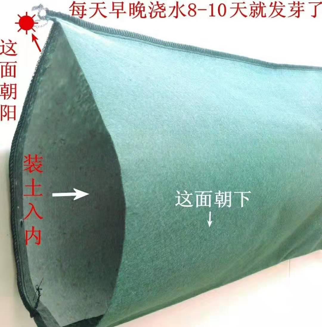 <b>绿化袋</b>